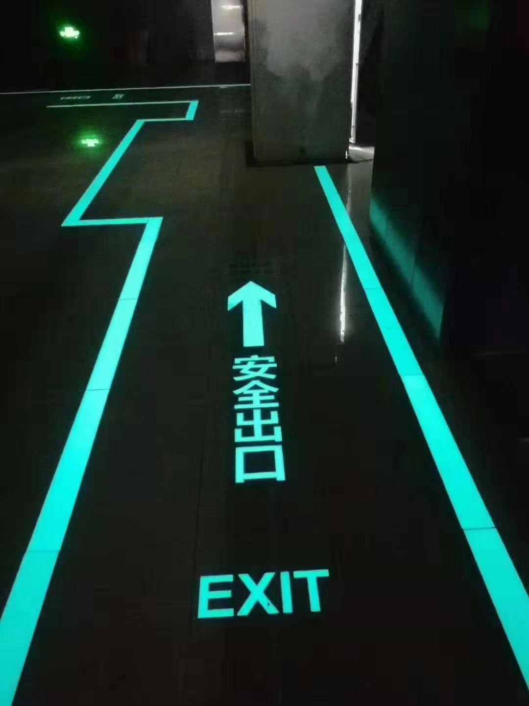 Glow in The Dark Fire-fighting Sign